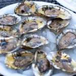Bagaduce-oysters-3