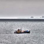 Brooklin-Lobstermen-morning-throwing-trap