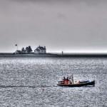 Brooklin-Lobstermen-morning-with-lobster.jpg