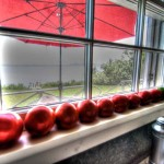 Tomatoes-Brooklin-Kitchen-Window