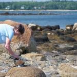 mom-examining-mussels